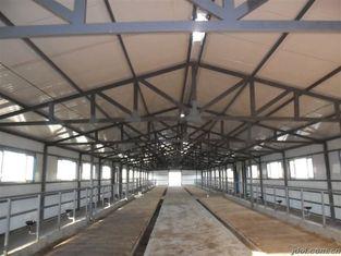 Chine Systèmes de encadrement en acier préfabriqués durables de vache/cheval avec l'utilisation élevée flexible de l'espace fournisseur